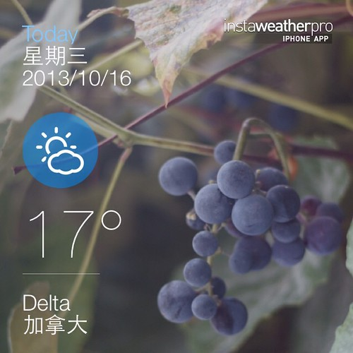 #weather #instaweather #instaweatherpro  #sky #outdoors #nature #world #love #followme #follow #beautiful #instagood #fun #cool #like #life #nice #happy #colorful #photooftheday #amazing #delta #加拿大 #day #autumn #ca ⛅️中午好☕️