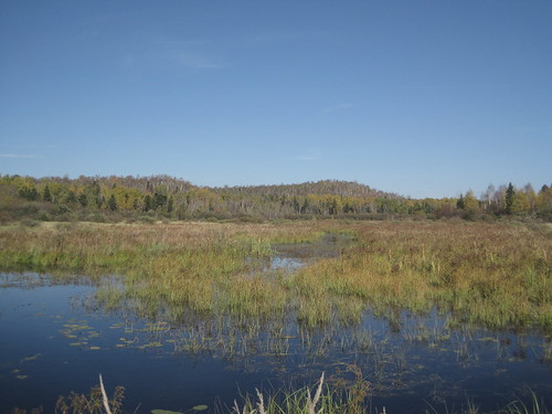Laurentian Conservation Area