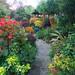 Autumn colours in the pagoda garden (October 24) by Four Seasons Garden
