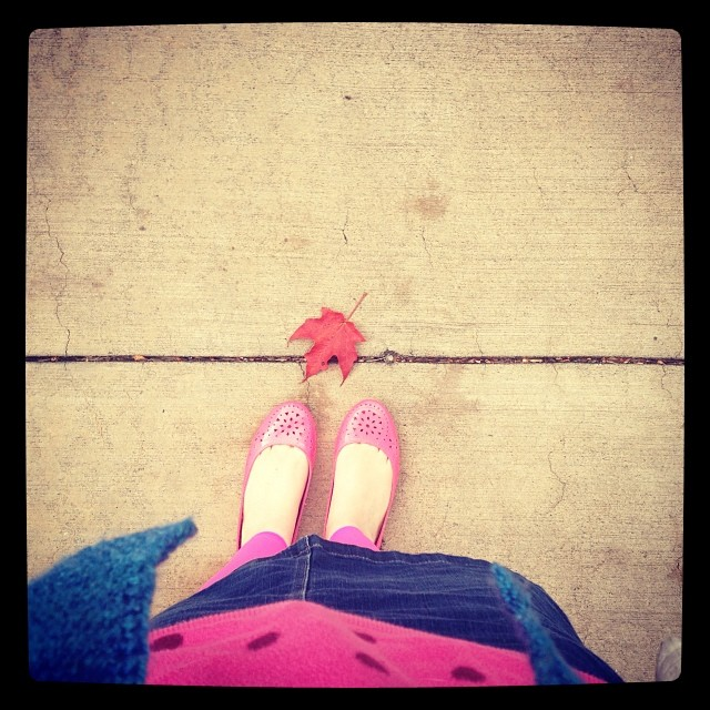 Finally cold enough for tights, sweater, shawl. #yayfall