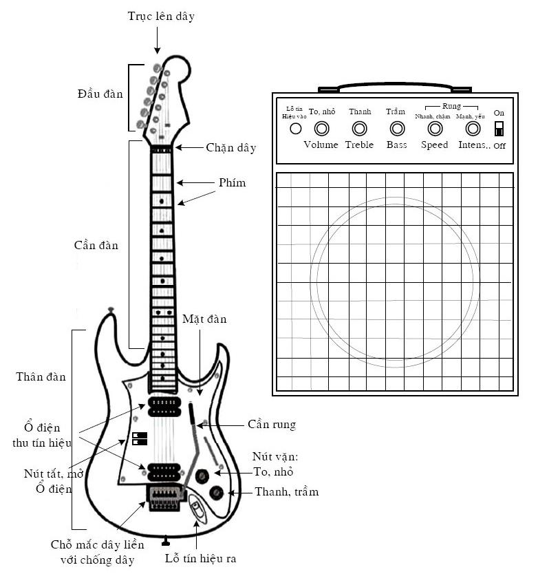 cau truc dan guitar va ampli