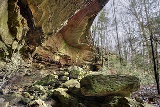 Rock shelter 1, Pogue Creek SNA, Pickett Co, TN