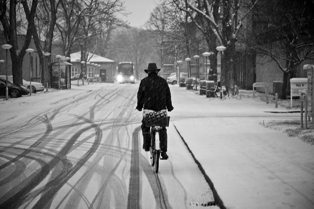 Viking Biking_5