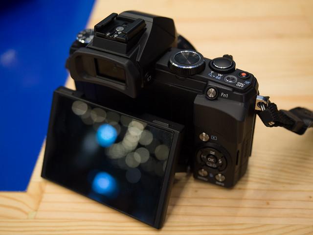 E-M1 photo (17)