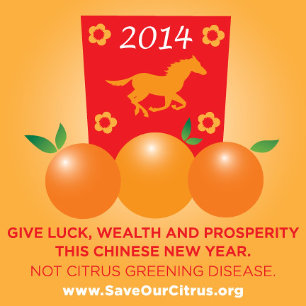 If you are sending citrus gifts, learn how to do it responsibly by visiting www.saveourcitrus.org