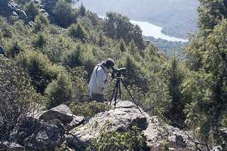 Fotografíando aves. Foto: Miguel A. Muñoz Romero.