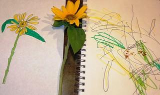 Sunflower v2 - Realistic Art - 503x300 - 7Oct13