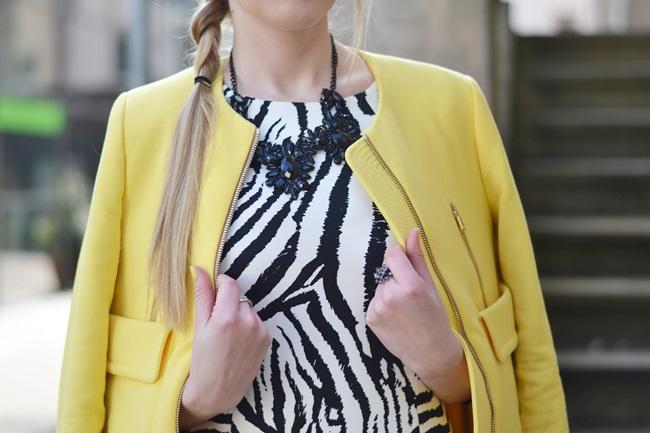 Aufs Zebra gekommen Kleid (9)