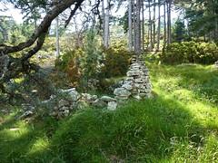 Les ruines de l'habitation principale de la bergerie de Biancarellu
