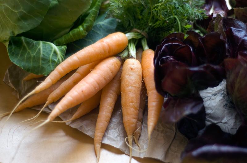 cenouras e chicória
