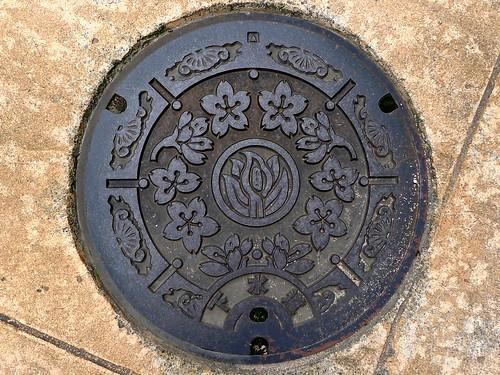 Johana Toyama, manhole cover 3 (富山県城端町のマンホール3)