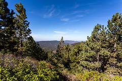 Kings Canyon & Sequoia - 150
