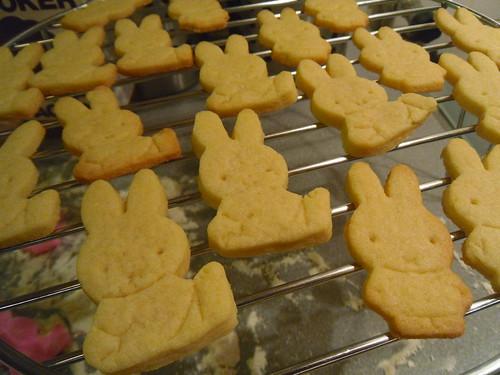 Close up sugar cookies