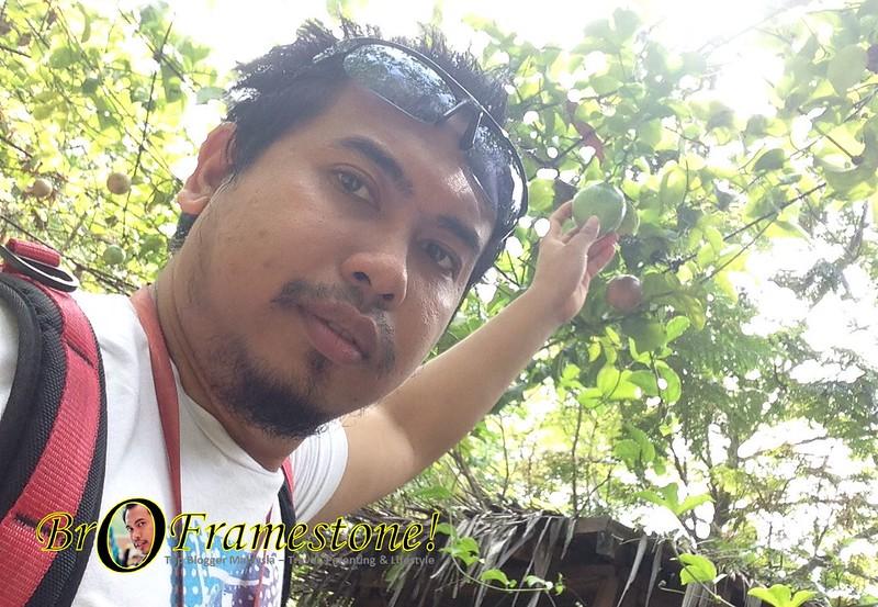 Kebun dalam Taman Farm in The City, Seri Kembangan - Kelab Blogger Ben Ashaari