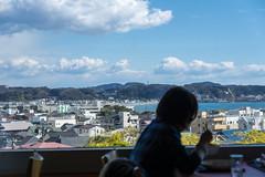海光庵からの風景