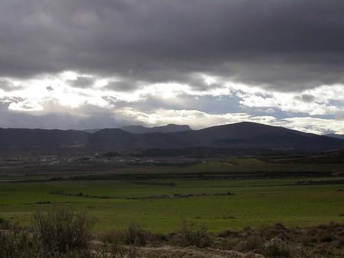 Campos de cereal, cerca de El Pozuelo, con vista a Fuendejalón.