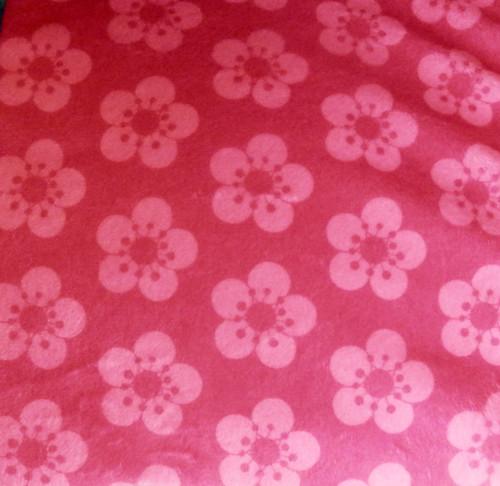 Cherry blossom joy