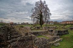 Nord - Site archéologique et Musée de Bavay