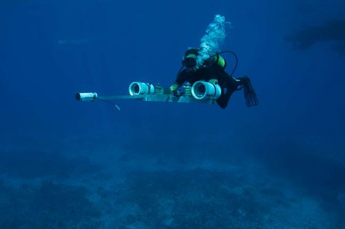 The stereo imaging system in action underwater