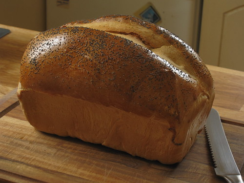 Possibly the most photogenic bread I've ever baked