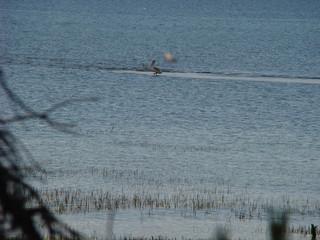 035 Pelican creek trail