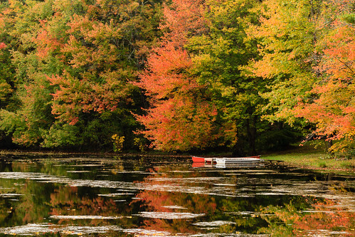Docked Boats Under Fall Colors - Mike Dooley by mike_dooley