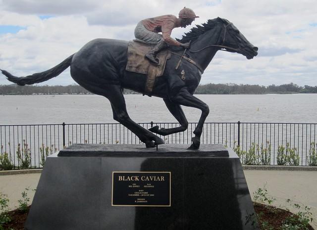 Black Caviar statue, Nagambie