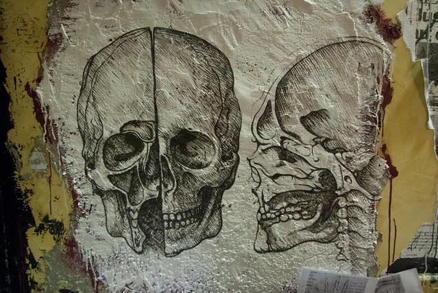 Anatomie du corps humain selon Da Vinci DDC_9539