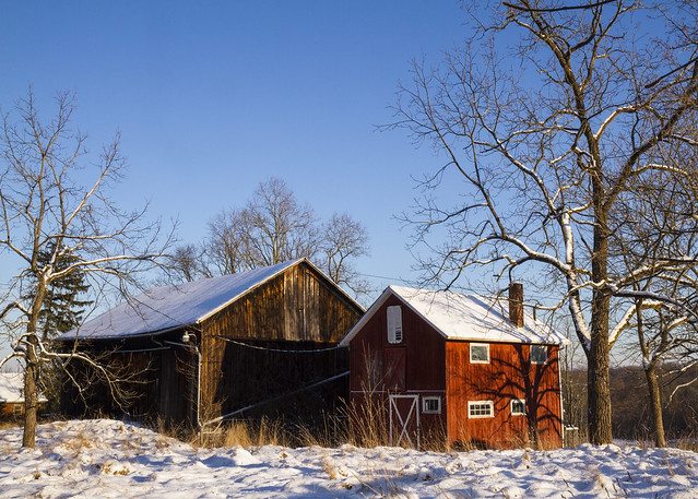 Barns and Snow