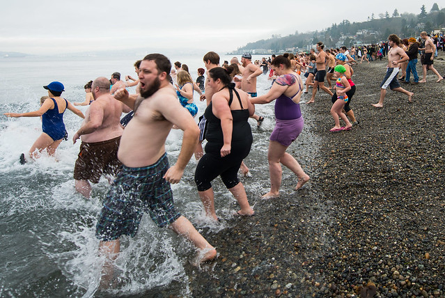 Polar Bear Dip, Seattle 1-1-14-2-11