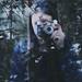 1/52 #camera by Giulia Pezzali