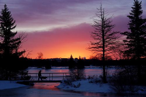bridge blue trees winter red orange dog lake sunrise river person