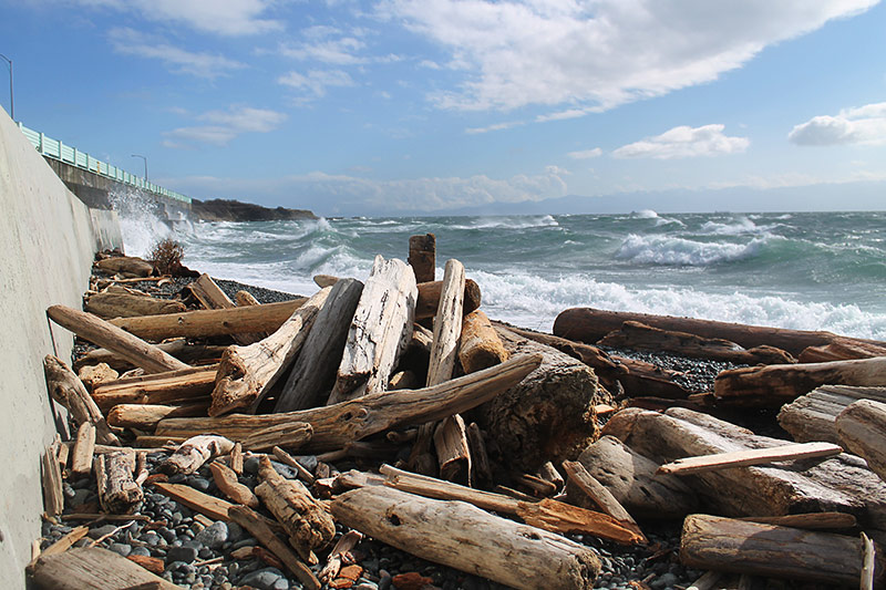 Windy Day at Dallas Road, Victoria, Vancouver Island, British Columbia, Canada