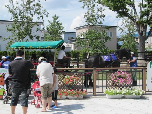 函館競馬場の馬車