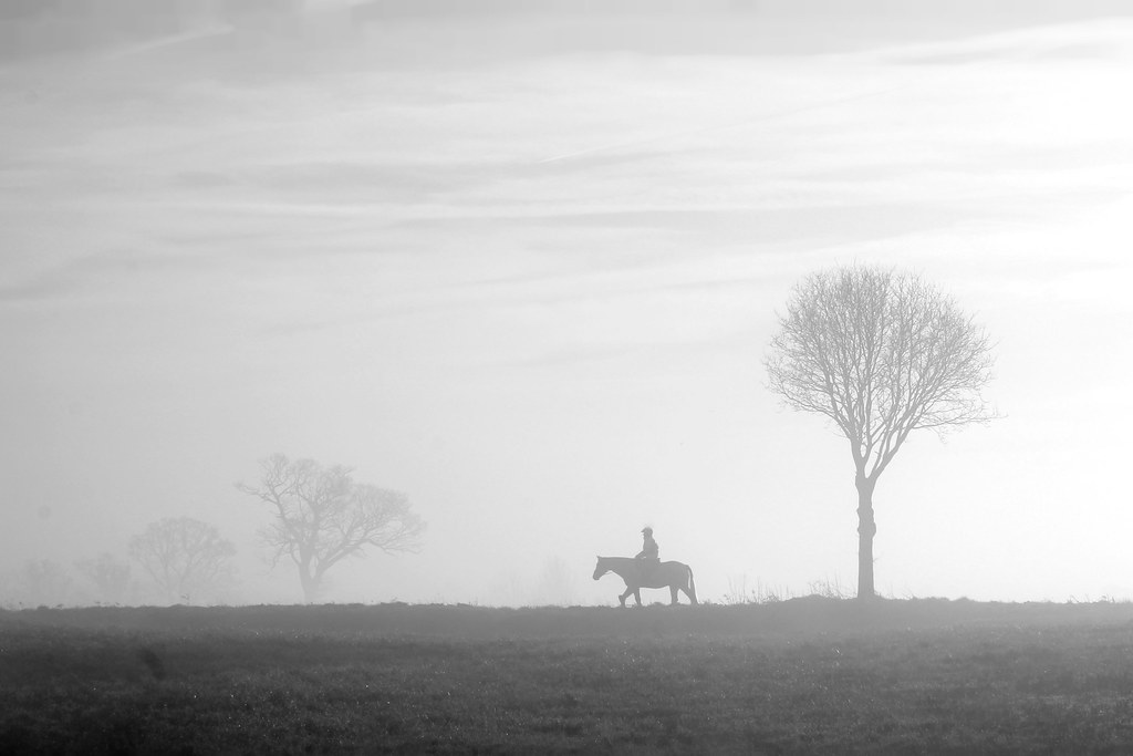 A Morning Person by Paul J Howarth