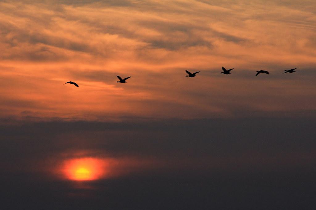 Above the sun ..