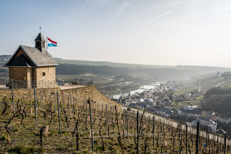 View over Wormeldange and river Mosel