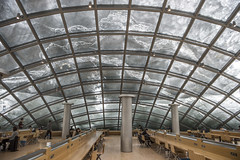 Mansueto Library Grand Reading Room under snow-covered dome