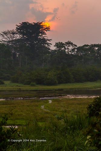 africa sunrise geography congo congobrazzaville congorepublic republicofcongo odzalakokouanationalpark departmentofcuvettequest mbokoconcession langobai
