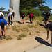 2014-05-10 SFSU Run For Missions 5k|10k