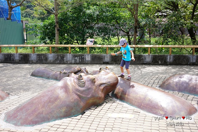 Walking on hippos