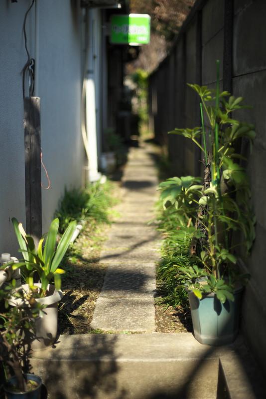 東京路地裏散歩 日暮里・谷中・上野 Voigtlander NOKTON 58mm 2015年2月12日