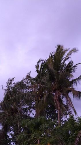 Bali-3-074