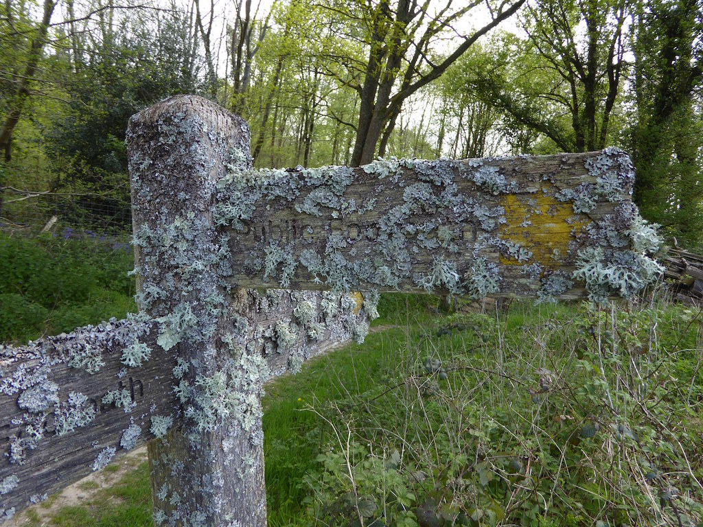 Lichen-covered sign Haslemere to Midhurst walk