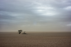 dust storm, The mallee