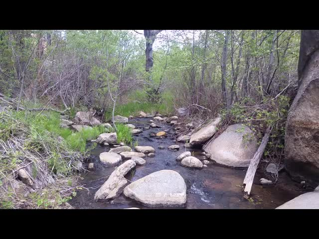 0302 Video of Holcomb Creek flowing near WR0287.5 where we filtered LOTS of water to carry and last overnight