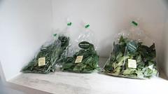 Photo:北鎌倉|自栽蔬菜、自製麵包的小店 By athenakuo