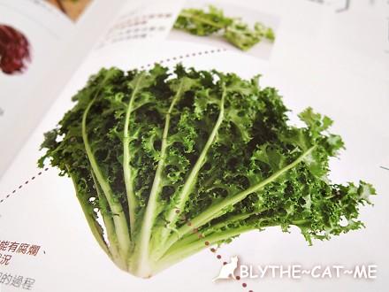蔬菜百科 (14)