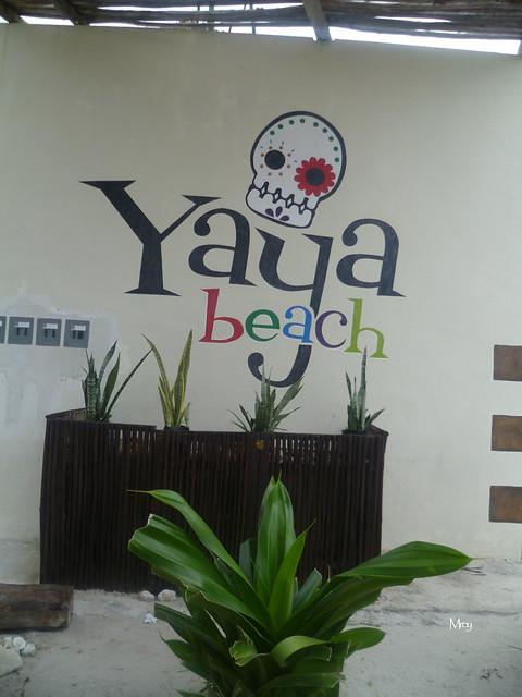 11_27_2012 lx costa maya 051