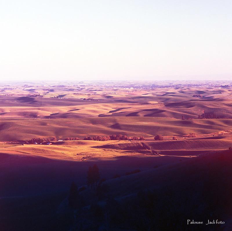Palouse (film)